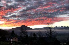 De ma fenêtre, un matin...