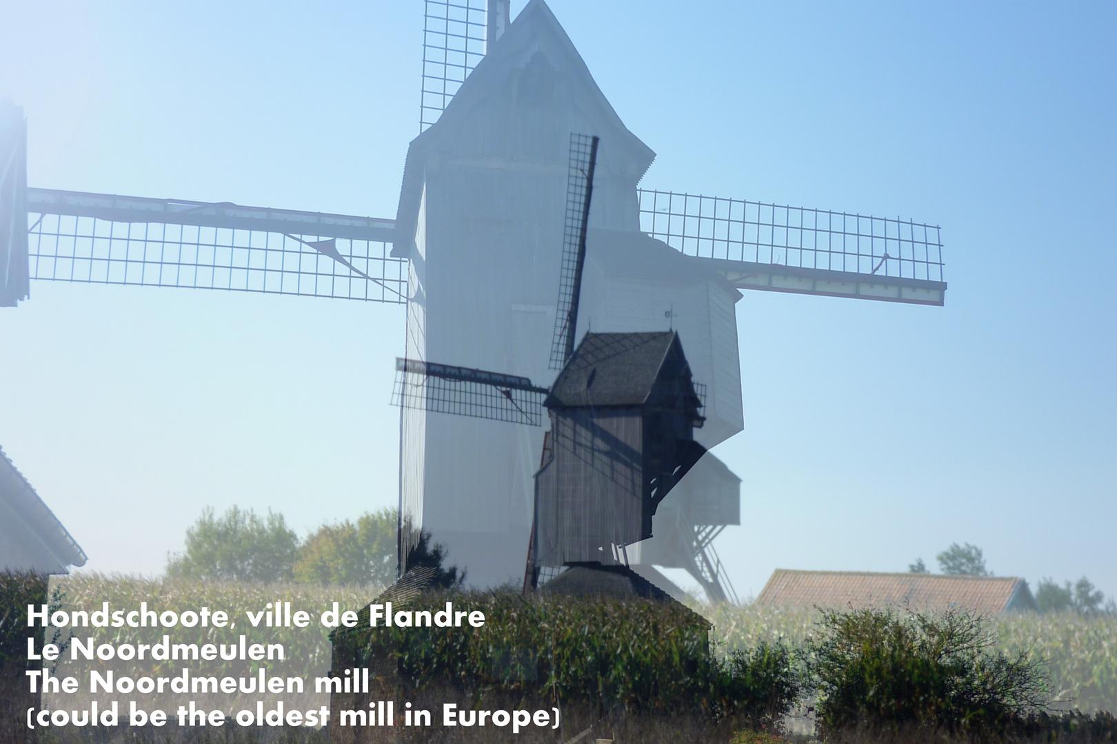 """""""De Noordmeulen"""" Windmühle in Hondschoote, Pas de Calais, Frankreich"""
