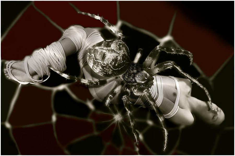 >>>>>>>>>>>>>>>>>>>>>>>>>Dead through spiders Bondage II