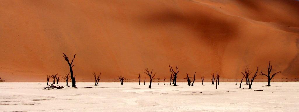 Deadvlei - dead thorn trees