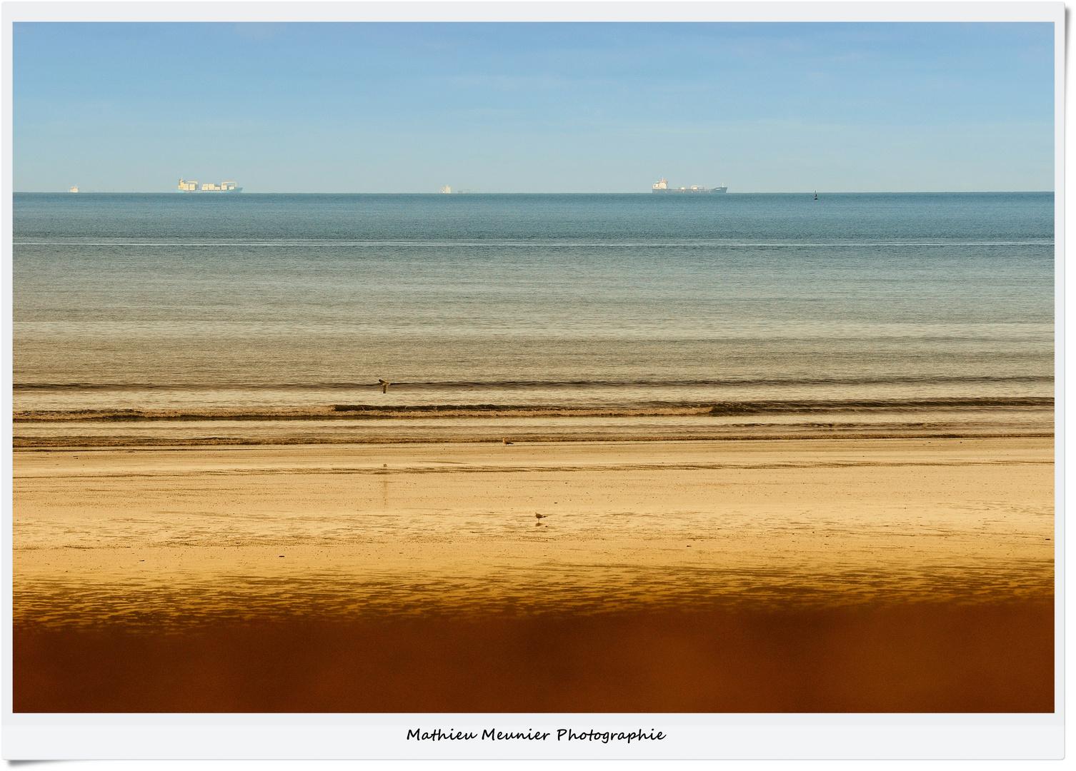 DEAUVILLE - Horizon Marchand