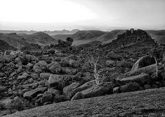 deep in a desert.dream