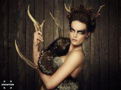 - deer -