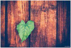 ... dein Herz, mein Puls, ein Takt ...