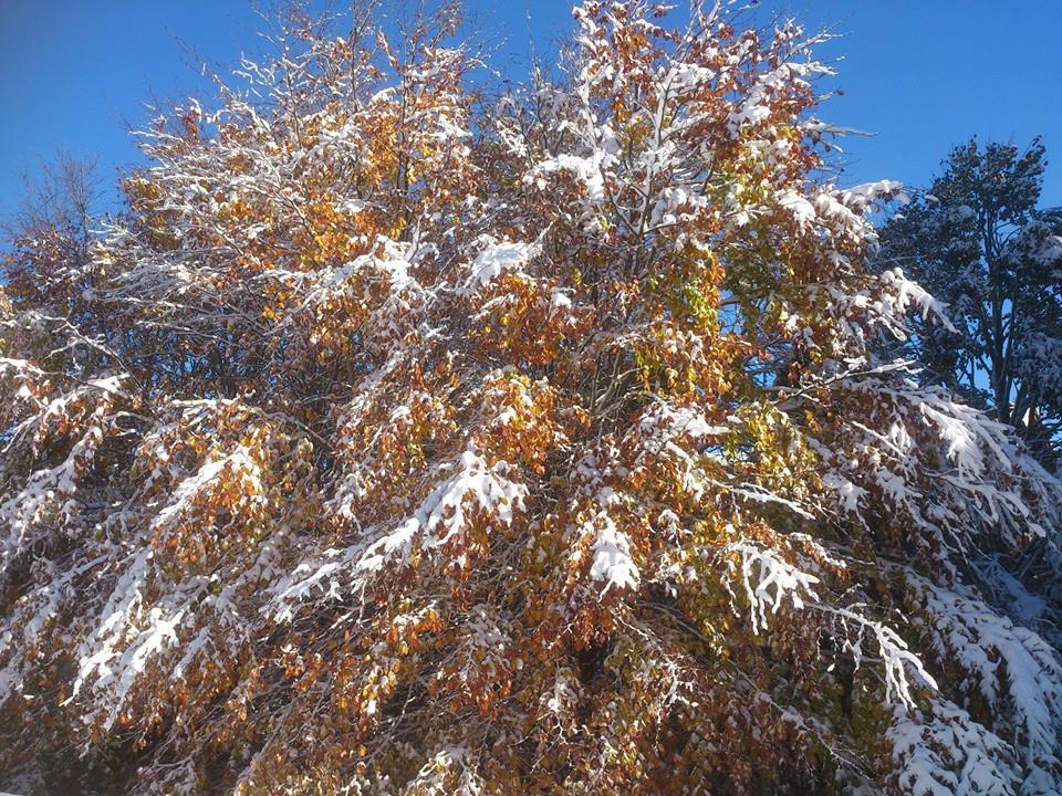 deja la neige!!