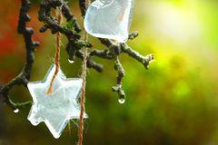 Deko für einen grünen Winter
