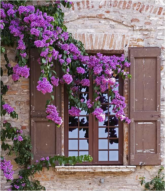 Dekoratives Fenster ..