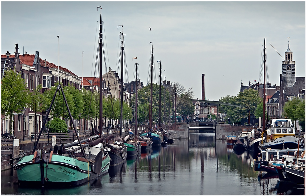 Delft Harbor