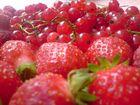 Délice de fruits rouges