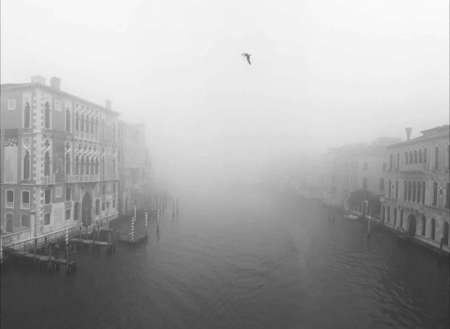 della nebbia e dintorni *