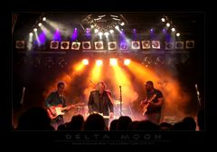 Delta Moon - Live 2014