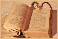 dem Bücherwurm ...