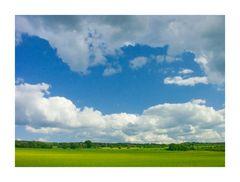 Dem Himmel zugewandt... - Hellblau, die Farbe der Sorglosigkeit...