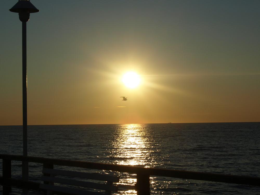 dem Sonnenaufgang entgegen