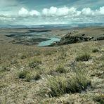 Dem Wind ausgesetzt - Patagonien hautnah