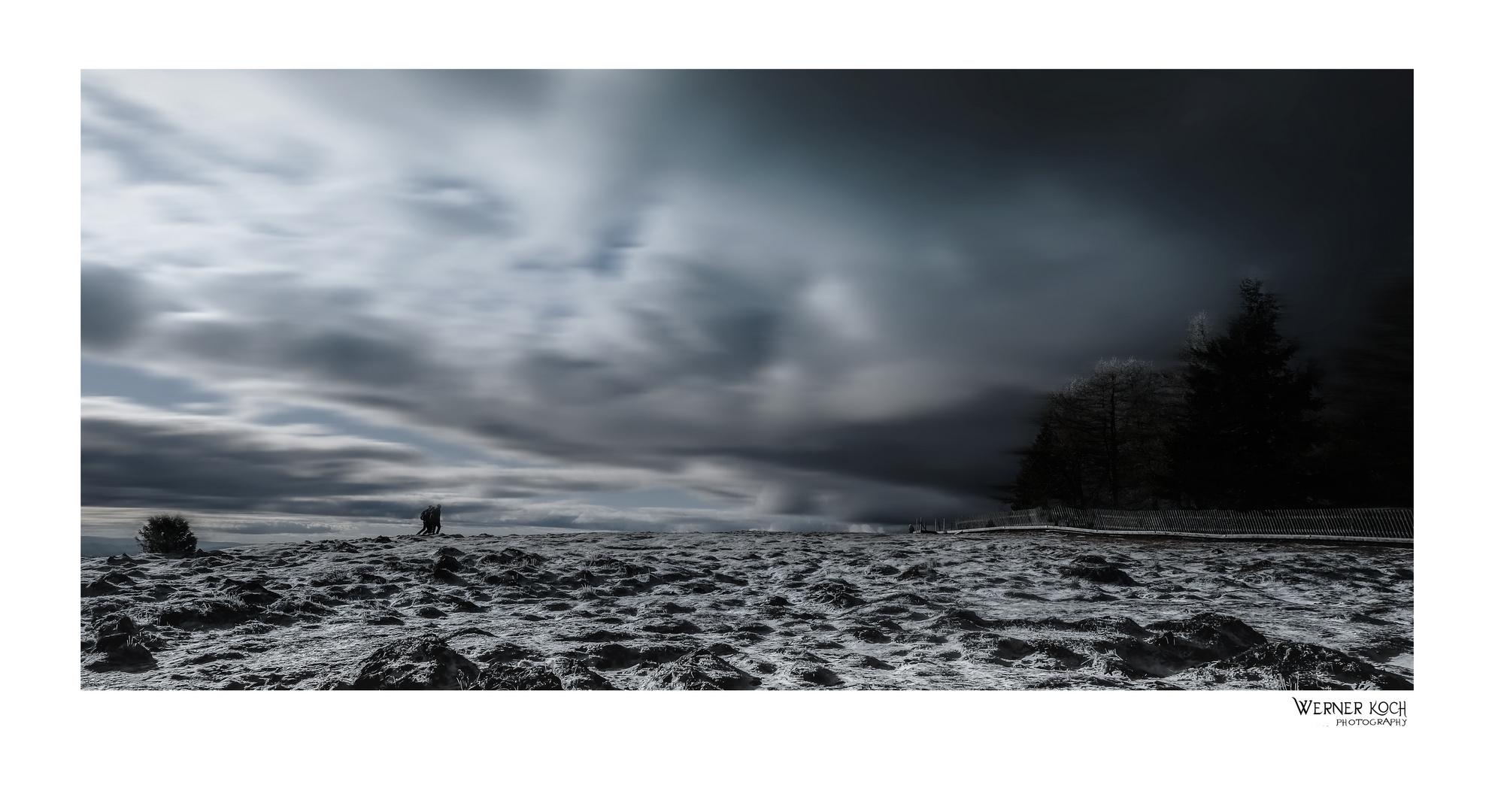Dem Wintersturm entgegen....
