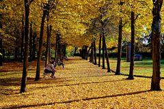 ... den Herbst genießen ...