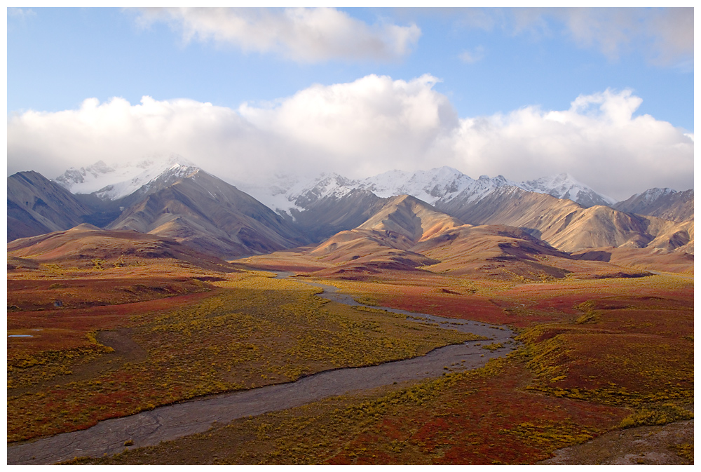 Denali Nationalpark