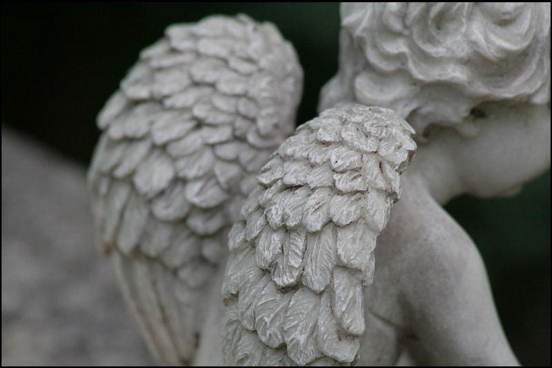Denkst du an Engel so bewegen sie ihre Flügel.