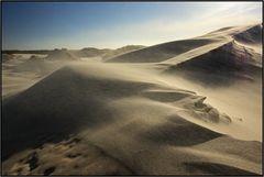 Denmark | migrating dune |
