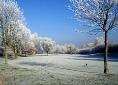 Denzlingen: am Heimatweg im Winter