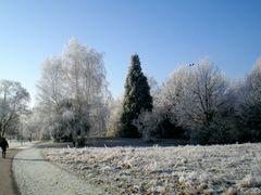 Denzlingen: Heimatweg im Winter