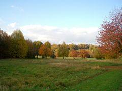 Denzlingen: Herbst im Stadtpark 1