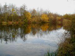 Denzlingen: im Herbst am Heidachsee