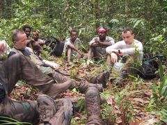 Depression im Dschungel