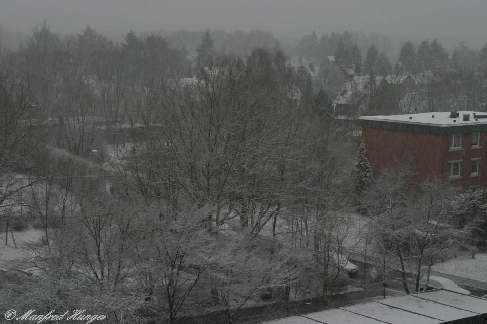 Der 1. Schnee in diesem Winter...