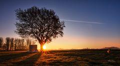 Der 1. Wintertag bei -2° und Sonnenaufgang