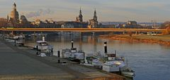 Der 12. Januar  war vormittags in Dresden frostig aber sehr fotogen...