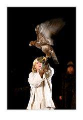 Der Adler ist gelandet !