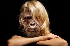 Der Affe im Menschen