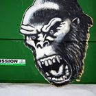 ~ der Affe ist los ~