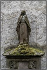 Der alte Friedhof in Freiburg 07
