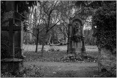Der alte Friedhof in Freiburg 08