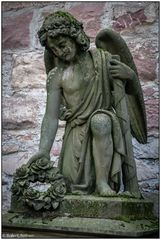 Der alte Friedhof in Freiburg 11