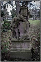 Der alte Friedhof in Freiburg 14