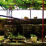 der alte Garten ein Kleinod