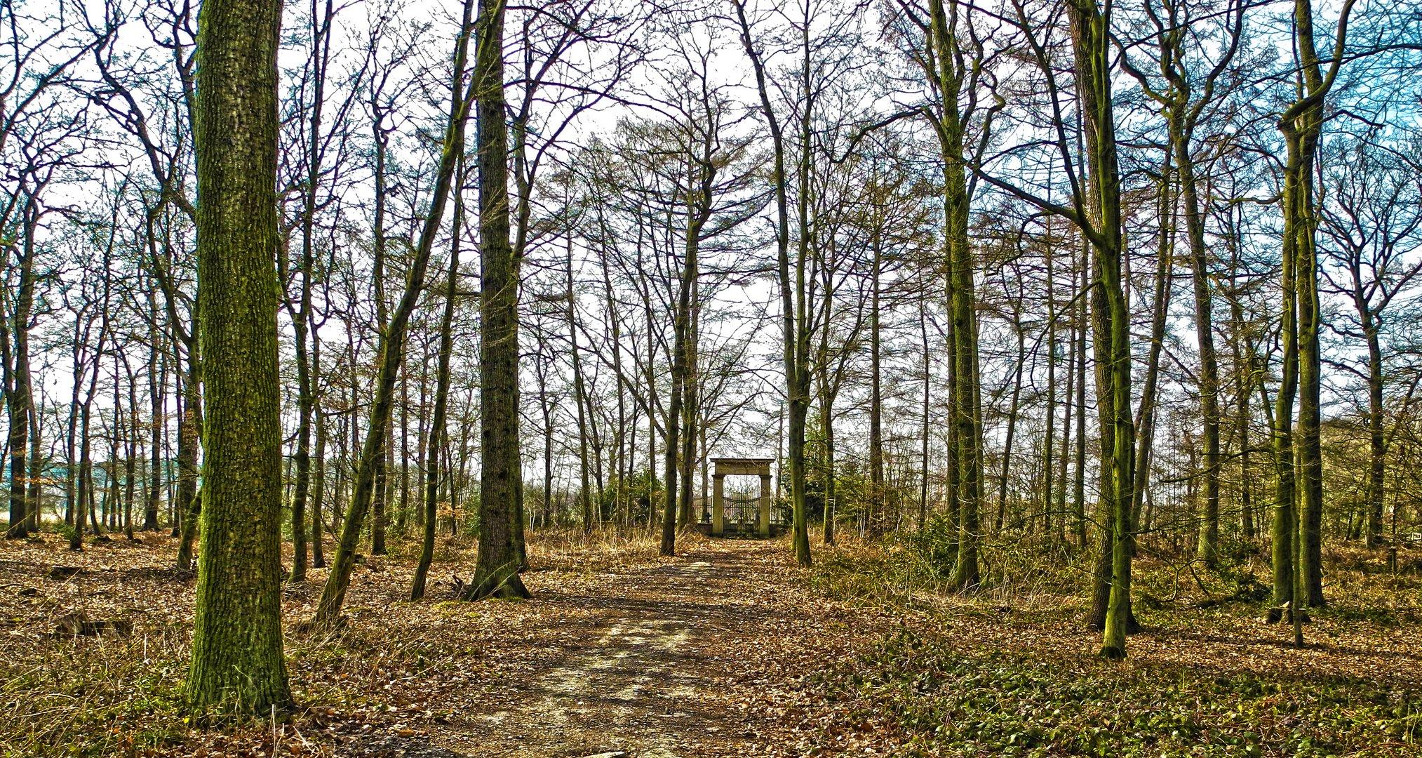Der alte Grafenfriedhof