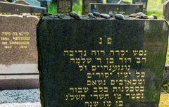 Der alte jüdische Friedhof 02