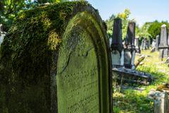 Der alte jüdische Friedhof 05