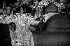 Der alte jüdische Friedhof 07