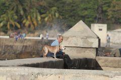Der alte Mann und der Hund