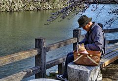 Der alte Mann und sein Hund