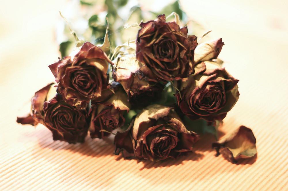 Der alte Rosenstrauß