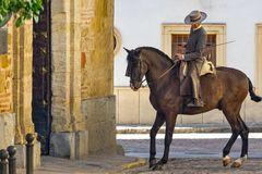 Der Andalusier – Ideal eines Reitpferdes