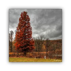 Der andere Herbst 3