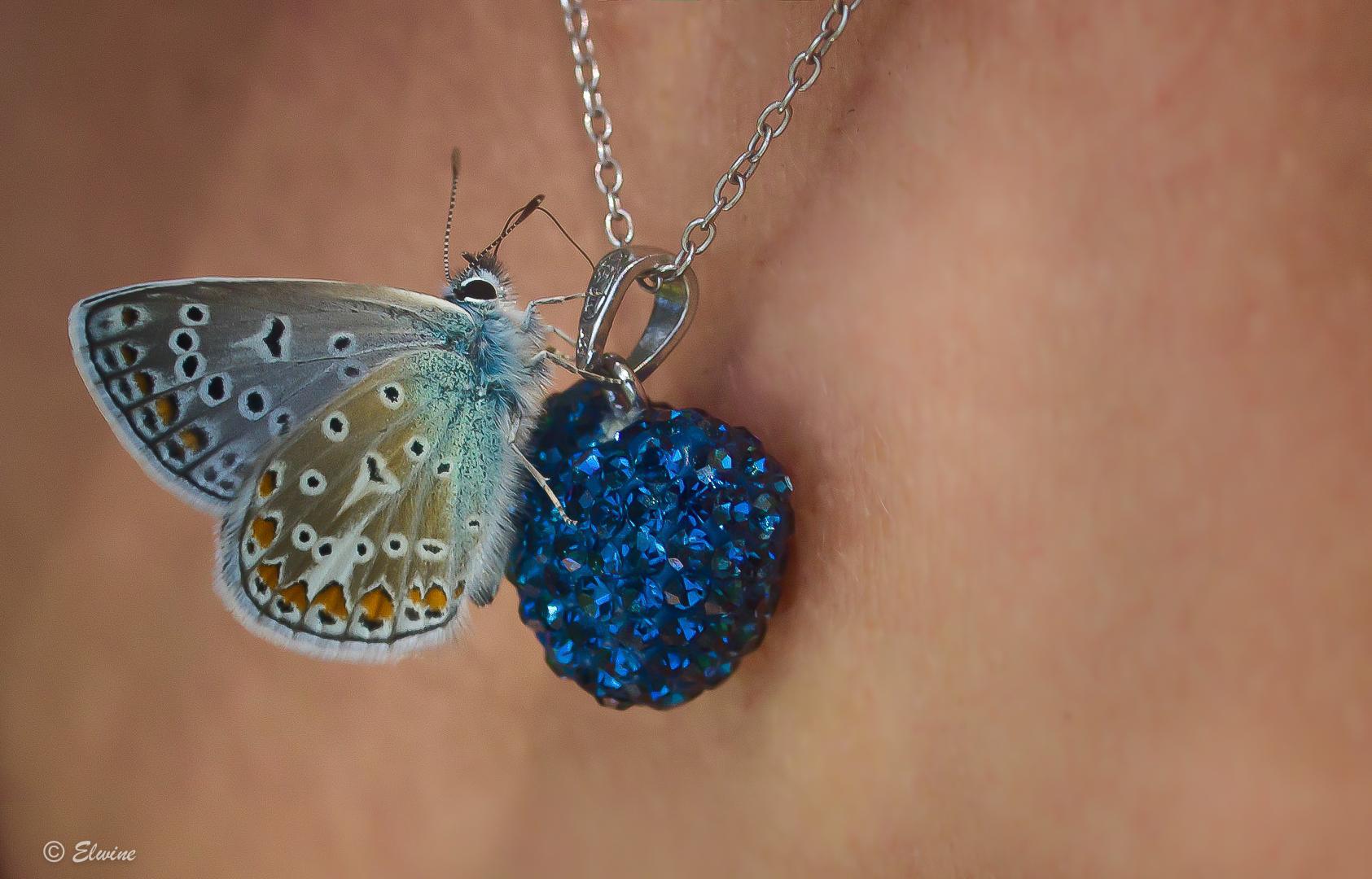 Der Anhänger und der Schmetterling
